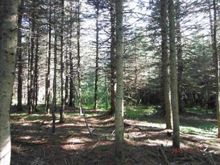 Land for sale in Saint-Marcellin, Bas-Saint-Laurent, 512, Route  234, 15719520 - Centris.ca