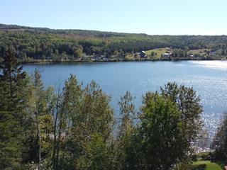 Terrain à vendre à Saint-Aimé-des-Lacs, Capitale-Nationale, Rue  Larouche, 27032180 - Centris.ca