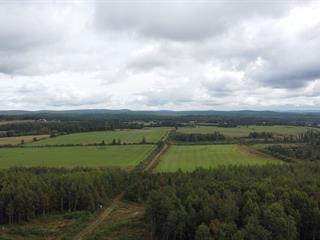 Terre à vendre à Aumond, Outaouais, Chemin  Émard, 23268521 - Centris.ca
