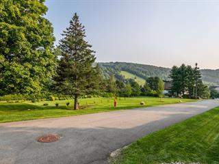Terrain à vendre à Saint-Sauveur, Laurentides, Chemin  Alpin, 20252118 - Centris.ca