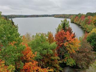 Terrain à vendre à Saint-Damien-de-Buckland, Chaudière-Appalaches, Chemin du Lac-Dion, 13696328 - Centris.ca