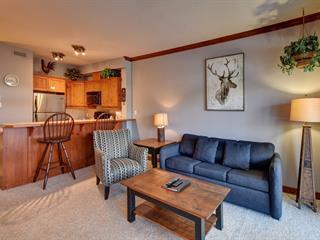 Condo for sale in Mont-Tremblant, Laurentides, 206, Rue du Mont-Plaisant, apt. 7, 25793181 - Centris.ca