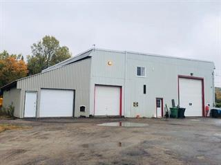 Industrial building for sale in Lac-Saguay, Laurentides, 289, Route  117, 16070605 - Centris.ca