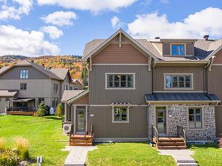 Maison à vendre à Saint-Donat (Lanaudière), Lanaudière, 118, Chemin de la Rive-Gauche, 21033595 - Centris.ca