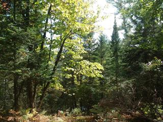 Lot for sale in Blue Sea, Outaouais, Chemin du Lac-Castor, 10109709 - Centris.ca