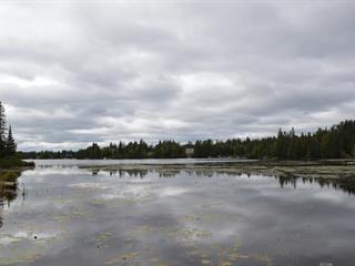 Lot for sale in Lantier, Laurentides, Chemin du Lac-Cardin, 17235445 - Centris.ca