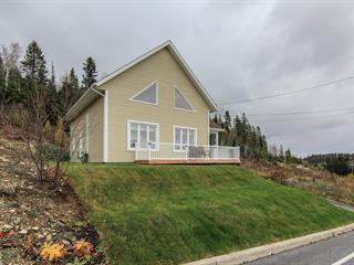 House for sale in Larouche, Saguenay/Lac-Saint-Jean, 685, Rue  Gagné, 13006380 - Centris.ca