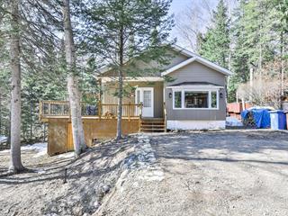 Maison à vendre à Saint-Donat (Lanaudière), Lanaudière, 44, Chemin de la Pente-Douce, 10115889 - Centris.ca