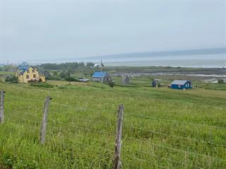 Maison à vendre à Notre-Dame-des-Sept-Douleurs, Bas-Saint-Laurent, 7702, Chemin de l'Île, 13486821 - Centris.ca