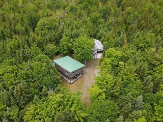 House for sale in Sainte-Apolline-de-Patton, Chaudière-Appalaches, 310, Rang  Saint-Jean, 15229074 - Centris.ca
