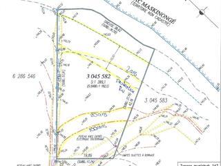 Terrain à vendre à Saint-Gabriel-de-Brandon, Lanaudière, 1re av. du Domaine-Morin, 21334044 - Centris.ca