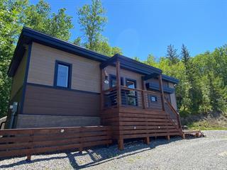 Maison à vendre à Ville-Marie (Abitibi-Témiscamingue), Abitibi-Témiscamingue, 25, Rue  Augier, 24133003 - Centris.ca
