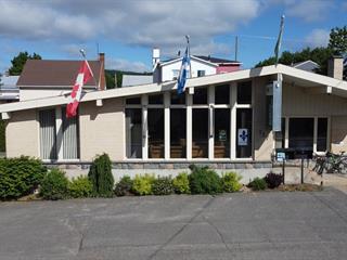Bâtisse commerciale à vendre à Ham-Nord, Centre-du-Québec, 287, 1re Avenue, 22535846 - Centris.ca