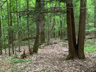 Terrain à vendre à Val-des-Monts, Outaouais, 113, Chemin  Lafrenière, 28836762 - Centris.ca