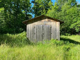 Terre à vendre à L'Isle-aux-Allumettes, Outaouais, 1078, Chemin de la Culbute, 24178799 - Centris.ca