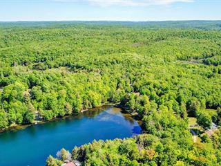 Terrain à vendre à Brownsburg-Chatham, Laurentides, Chemin du Lac-Valdemars, 25531918 - Centris.ca