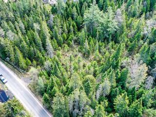 Lot for sale in Sainte-Agathe-des-Monts, Laurentides, Chemin du 10e Rang, 24691524 - Centris.ca