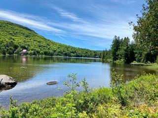 Terre à vendre à Saint-Donat (Lanaudière), Lanaudière, Route  125 Nord, 12531328 - Centris.ca