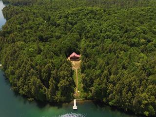 Maison à vendre à Notre-Dame-du-Laus, Laurentides, 31, Chemin du Lac-Earhart, 14762424 - Centris.ca