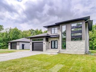House for sale in L'Ange-Gardien (Outaouais), Outaouais, 103, Chemin  Éméralda, 11886898 - Centris.ca