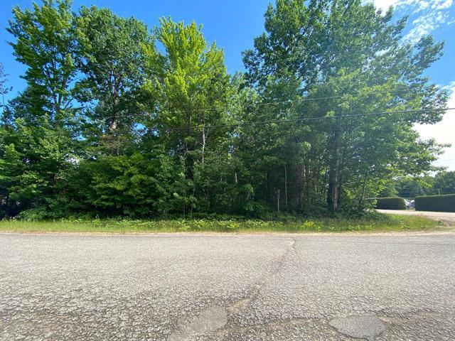 Terrain à vendre à Mansfield-et-Pontefract, Outaouais, 44, Rue  Dagenais, 28862218 - Centris.ca