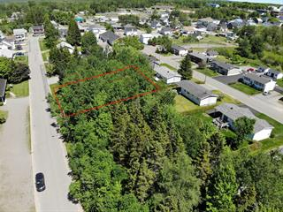 Lot for sale in Sainte-Perpétue (Chaudière-Appalaches), Chaudière-Appalaches, Rue des Mélèzes, 20352423 - Centris.ca