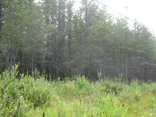 Terre à vendre à Launay, Abitibi-Témiscamingue, Route  111, 11197600 - Centris.ca