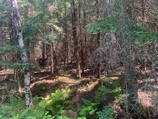 Land for sale in Stornoway, Estrie, Route  161 Sud, 23121252 - Centris.ca