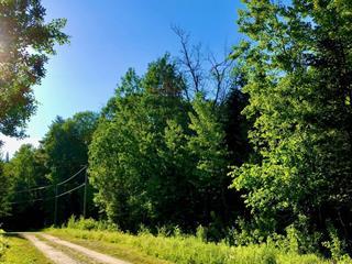 Terrain à vendre à La Pêche, Outaouais, 105, Chemin  Tibbit, 25100700 - Centris.ca