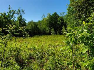 Terrain à vendre à Notre-Dame-des-Prairies, Lanaudière, Rue  Denis, 25947356 - Centris.ca