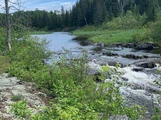 Terrain à vendre à Saint-Eugène-de-Guigues, Abitibi-Témiscamingue, Chemin du Lac-Cameron, 27479574 - Centris.ca