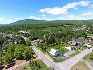 Terrain à vendre à Saint-Ferréol-les-Neiges, Capitale-Nationale, 010, Avenue  Royale, 17904398 - Centris.ca