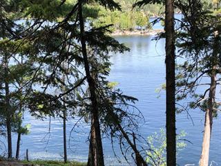 Lot for sale in Lac-du-Cerf, Laurentides, Chemin de la Passe, 20335566 - Centris.ca
