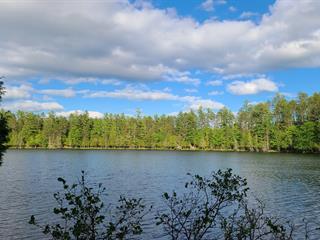 Terrain à vendre à Gracefield, Outaouais, 19, Chemin de la Baie, 11572276 - Centris.ca