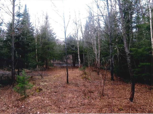 Terrain à vendre à Rivière-à-Pierre, Capitale-Nationale, Rue du Lac-Vert, 19998756 - Centris.ca