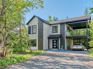 House for sale in Saint-Ferréol-les-Neiges, Capitale-Nationale, 101, Rue du Renard, 13014923 - Centris.ca