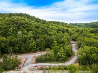 Terrain à vendre à Bromont, Montérégie, Chemin de Gaspé, 9329489 - Centris.ca