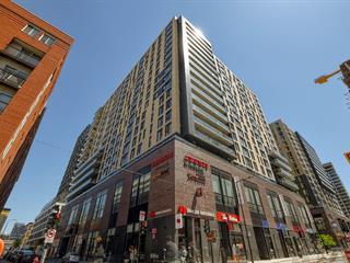 Loft / Studio for rent in Montréal (Le Sud-Ouest), Montréal (Island), 235, Rue  Peel, apt. 1404B, 15025819 - Centris.ca