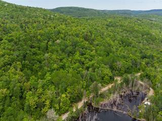 Terre à vendre à Chertsey, Lanaudière, Avenue du Lac-Clair Nord, 26219046 - Centris.ca