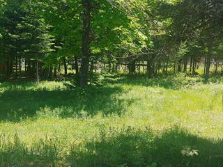 Terrain à vendre à Wentworth-Nord, Laurentides, 3069, Rue  Diane, 23625877 - Centris.ca