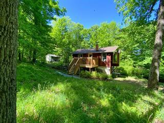 House for sale in Danville, Estrie, 254A, Chemin  Noble, 19359791 - Centris.ca