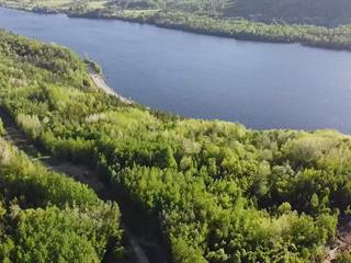 Lot for sale in Grandes-Piles, Mauricie, Rue  Non Disponible-Unavailable, 17922697 - Centris.ca