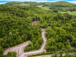 Lot for sale in Bromont, Montérégie, Chemin de Gaspé, 13554508 - Centris.ca