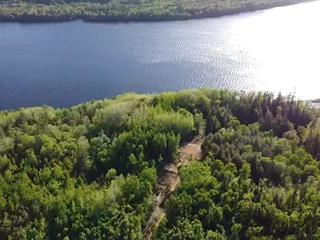 Lot for sale in Grandes-Piles, Mauricie, Rue  Non Disponible-Unavailable, 13533024 - Centris.ca