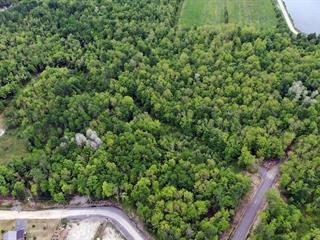 Terrain à vendre à Lac-Brome, Montérégie, Rue  St. Andrew, 16048131 - Centris.ca