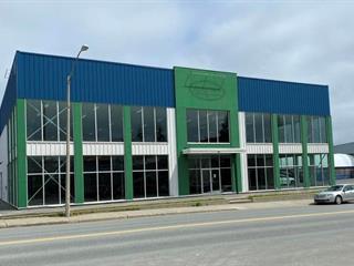 Commercial building for rent in Rouyn-Noranda, Abitibi-Témiscamingue, 831, Avenue  Larivière, 27799069 - Centris.ca