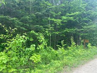 Lot for sale in Amherst, Laurentides, Chemin  Nantel Sud, 12737132 - Centris.ca
