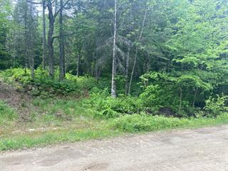 Lot for sale in Amherst, Laurentides, Chemin  Nantel Sud, 28694515 - Centris.ca