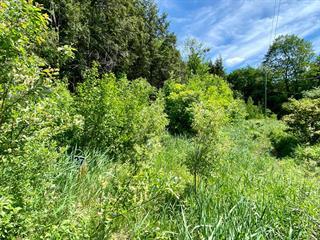 Terrain à vendre à Cowansville, Montérégie, Rue de Sweetsburg, 28891849 - Centris.ca