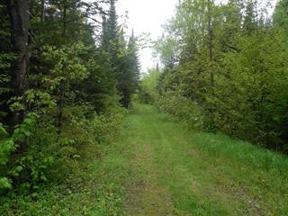 Land for sale in Saint-Luc-de-Bellechasse, Chaudière-Appalaches, 6e Rang, 21441850 - Centris.ca